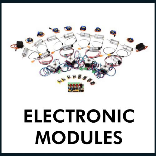 Electronic Modules